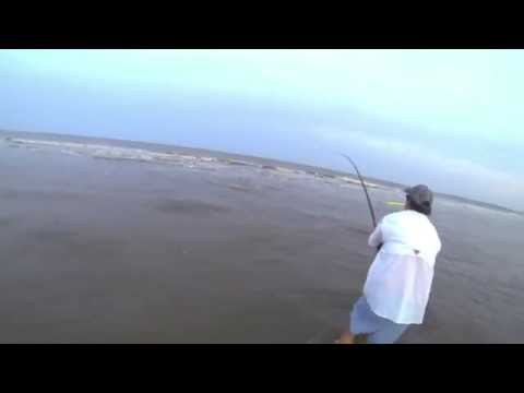 Surf fishing Red Drum from the beach – Georgia