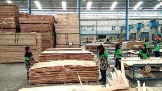 Video Proses Pembuatan Blockboard di Pabrik Kayu PT Nagabhuana Wonogiri MP3, 3GP, MP4, WEBM, AVI, FLV Desember 2017