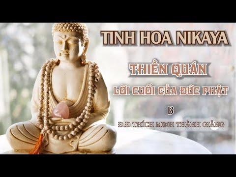 Tinh Hoa NIKAYA - Thiền Quán - Lời Cuối Của Đức Phật B