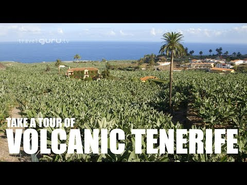 A Guide To Volcanic Tenerife