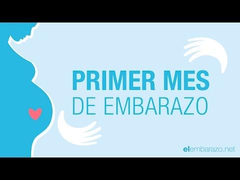 Primer mes de embarazo | 1 mes de embarazo | El embarazo mes a mes