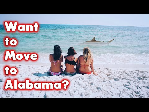 Top 10 Reasons to Move to and Live in Alabama. (Bonus at the end.)