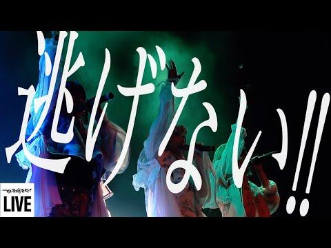 , title : 'ゆるめるモ!(You'll Melt More!)『逃げない!!』(7周年イベント「ゆるめる007」 Live Version)'
