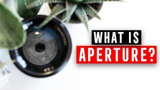 Camera Basics: APERTURE
