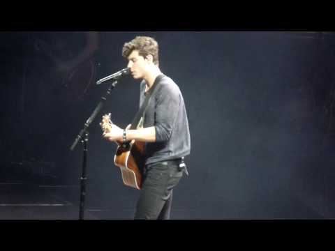 Bad reputation music profile de for Shawn mendes live at madison square garden