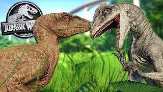 DINOSAUR BATTLES and DILO PACK ESCAPE! - Jurassic World Evolution