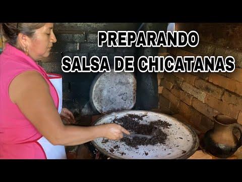 PREPARANDO SALSA DE CHICATANAS 🐜