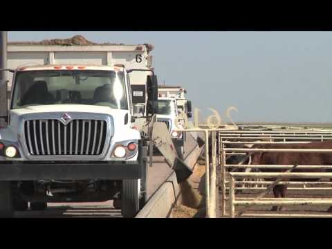 DocTalk: Low stress weaning practices