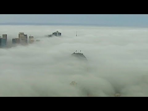 Sydney verschwindet tundenlang unter einer dichten Ne ...