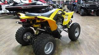 9. 2018 CAN-AM DS 250