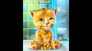 I don't know this song Talking Ginger app: http://o7n.co/Ginger