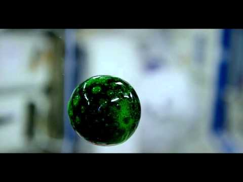 4K Video of Colorful Liquid in Space_A valaha feltöltött legjobb űrhajó videók