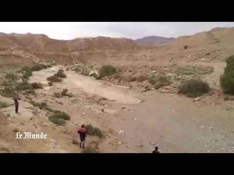 Une rivière réapparaît dans le désert du Neguev