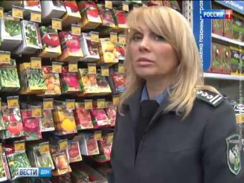 Семена цветов и овощей в ростовских магазинах проверили на вредителей и болезни