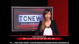 Leggere connessioni   TEF news