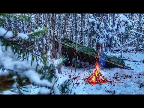 NO TENT Solo WINTER CAMPING Overnighter, BUSHCRAFT SURVIVAL SHELTER - First Big SNOWFALL, Off Grid