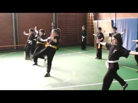F.K.T. Xin Dao - Special training Cinture gialle 2017