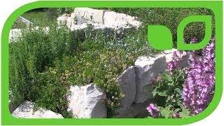 #1249 Kräuterspirale - Pflanzbeispiele, Anlegung, Pflege, Schnitt, Winterschutz