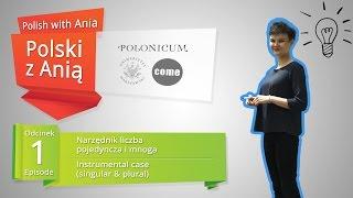Polish with Ania. 1. Instrumental Case / Polski z  Anią. 1. Narzędnik