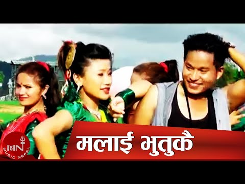 Malai Bhutukkai Paaryau Karke Heri heri -Teej song