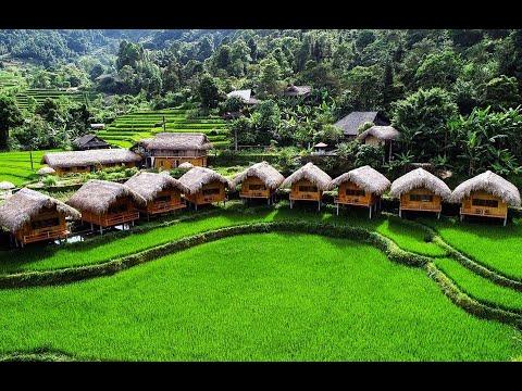 Homestay Hoàng Su Phì Lodge | Du Lịch Hà Giang
