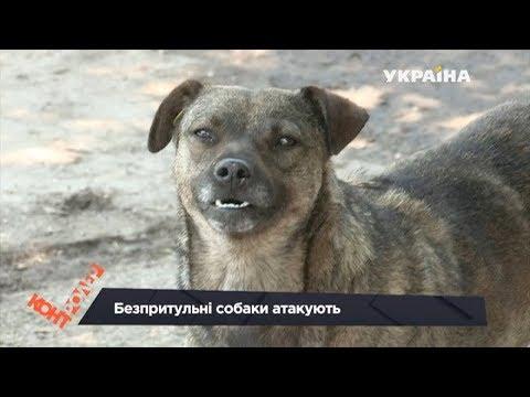 Киевские телеканалы рассказали о проблеме в Запорожской области