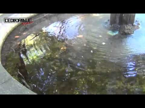 Il degrado delle fontane aquilane