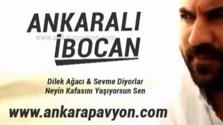 Ankaralı İbocan   Dilek Ağacı   Potpori