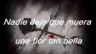 Video Don Omar - Ayer la Vi MP3, 3GP, MP4, WEBM, AVI, FLV Agustus 2019