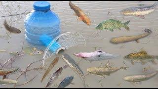 Creative Girl Make Fish Trap Using Big Plastic Bottle - PVC - Electric Fan To Catch A Lot of Fish