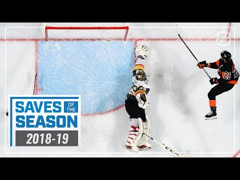 Best Saves of the 2018-19 NHL Season