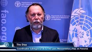 Entrevista con Tito Díaz - Coordinador Subregional de la FAO para Mesoamérica y Representante en Panamá donde nos cuenta los avances en los últimos  años y que se proyecta para el próximo bienio.Subscribe! http://www.youtube.com/subscription_center?add_user=FAOoftheUNFollow #UNFAO on social media!* Facebook - https://www.facebook.com/UNFAO * Google+ - https://plus.google.com/+UNFAO * Instagram - https://instagram.com/unfao/ * LinkedIn - https://www.linkedin.com/company/fao * Twitter - http://www.twitter.com/faoknowledge © FAO: http://www.fao.org
