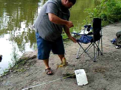 Carp fishing the Mississippi river