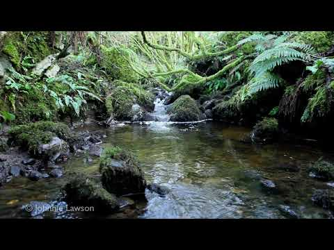 johnnielawson - Use the relaxing sounds of this beautiful tranquil waterfall in Beautiful 3D, as a natural sleep aid. Relax as you watch these 3Dwaterfall pictures, concentr...