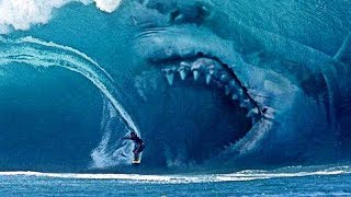Video 10 INCREDIBLE Facts About The Megalodon Shark MP3, 3GP, MP4, WEBM, AVI, FLV Desember 2018