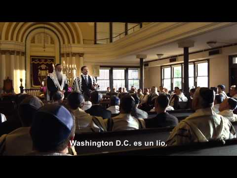 LOCOS POR LOS VOTOS - Trailer 1 subtitulado en español HD - Oficial de Warner Bros. Pictures