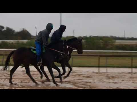 HICKS IS LIT galloping in the rain 12/7/17
