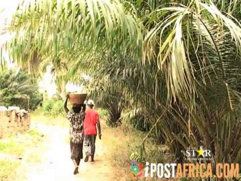 Ghanaian movie – Obaa Sima 1,2 full movie very funny @www.ipostafrica.com