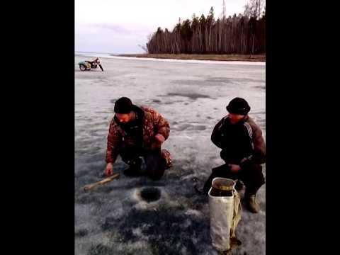 прогноз клева окуня в иркутской области