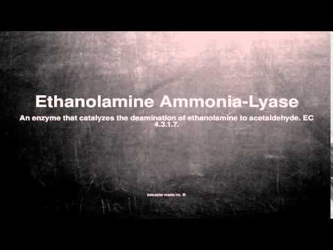 Medical vocabulary: What does Ethanolamine Ammonia-Lyase mean
