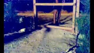 Korku Kapanı - Amatör Kısa Film