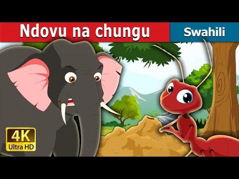 Ndovu na chungu   Hadithi za Kiswahili   Katuni za Kiswahili  Hadithi za Watoto  Swahili Fairy Tales