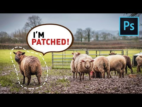The Patch Tool: Does More Than You Think | Complete Photoshop Guide