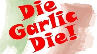 How to Prep a Bulb of Garlic - Die Garlic Die by POV Italian Cooking