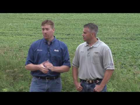 Soil pH (From Ag PhD #592 8/9/09) (видео)