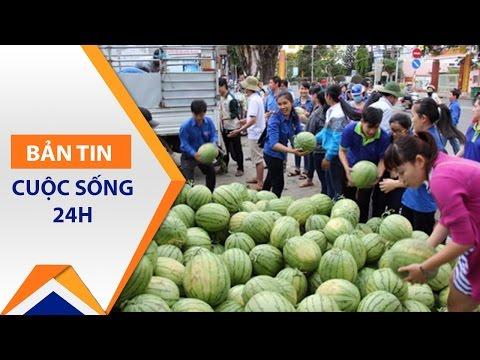 Quảng Ngãi: 'Giải cứu dưa hấu' cho người nông dân | VTC - Thời lượng: 77 giây.