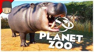Planet Zoo - Ep.02 : HIPPOPOTAMUS ENCLOSURE!