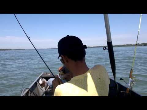 pescaria porto 18 ,,,,,, querencia do norte ,,,,,piapara 4 kilo