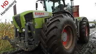 Video Claas Xerion Trac VC | King in the mais & mud fields in the Netherlands | HD. MP3, 3GP, MP4, WEBM, AVI, FLV Juni 2017
