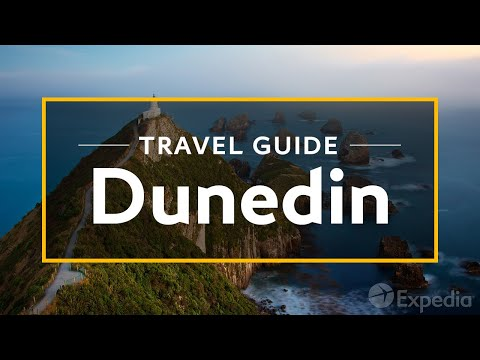 Dunedin Vacation Travel Guide | Expedia